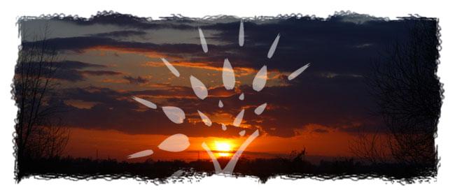 healing-sunset